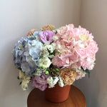 Arrangement / Potted Hydrangeas