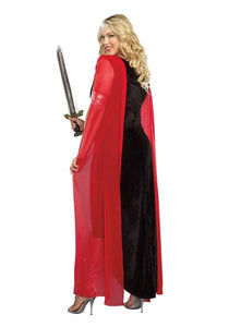 DG9407 Scandalous Sword Warrior Dreamgirl Costume