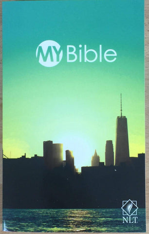 metro youth bible
