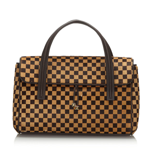 Brown Louis Vuitton Damier Sauvage Lionne Handbag