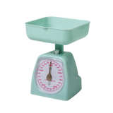 Rice Kitchen Scale In Pastel Green KISCA-XCPG