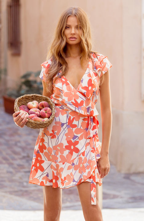Mimi Dress In La Rose