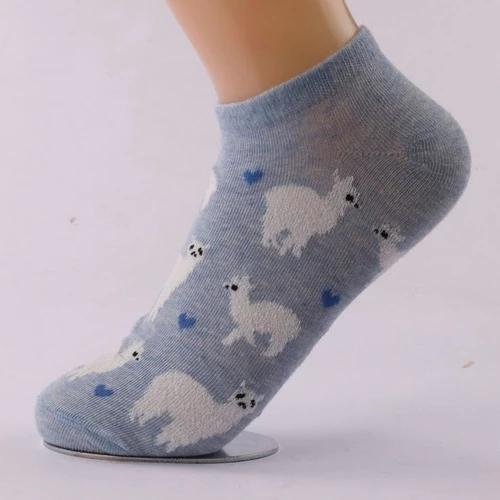Alpaca Love No-Show Cotton Socks - MEN ACCESSORIES - NIGEL MARK