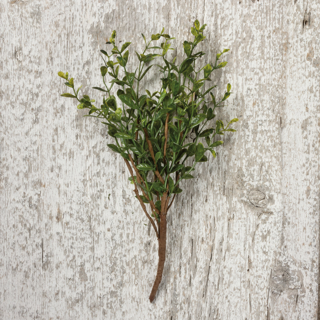 Boxwood Stem, Plant & Floral Cheap Décor