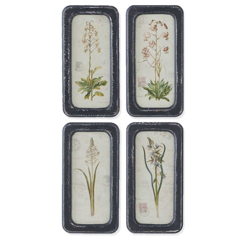 Botanical Glass Prints -Set of 4