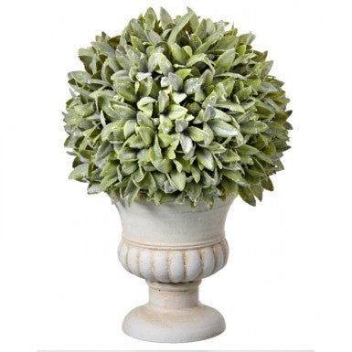 Plant - Flocked Sage Ball in Urn 11 inch