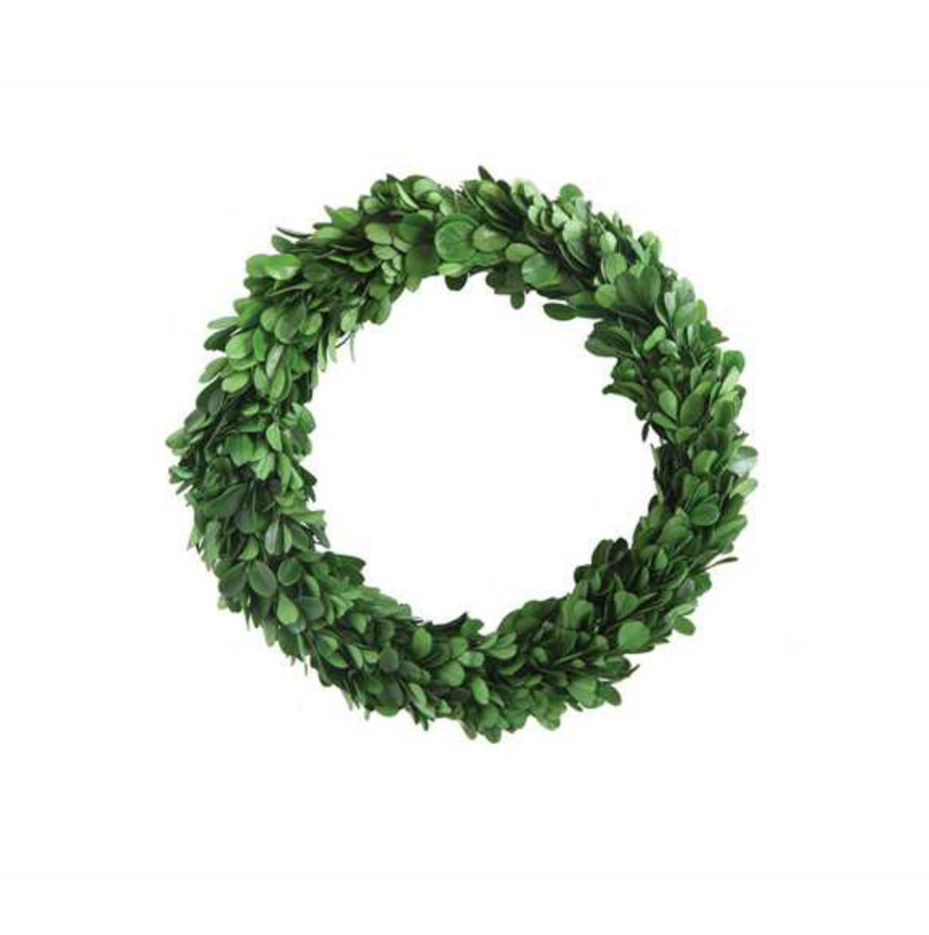 Plant - Boxwood Wreath Medium