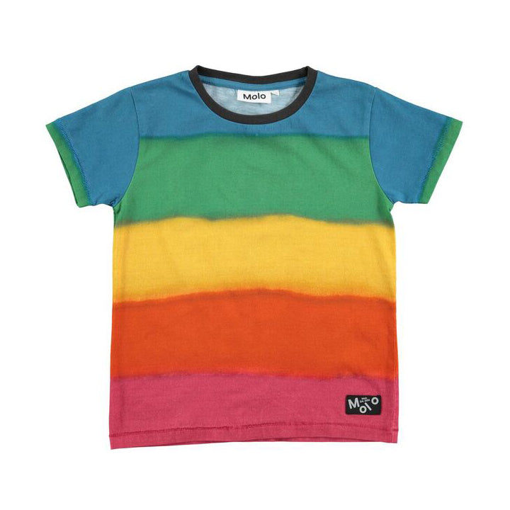 Sprayed Stripe Runi T-Shirt