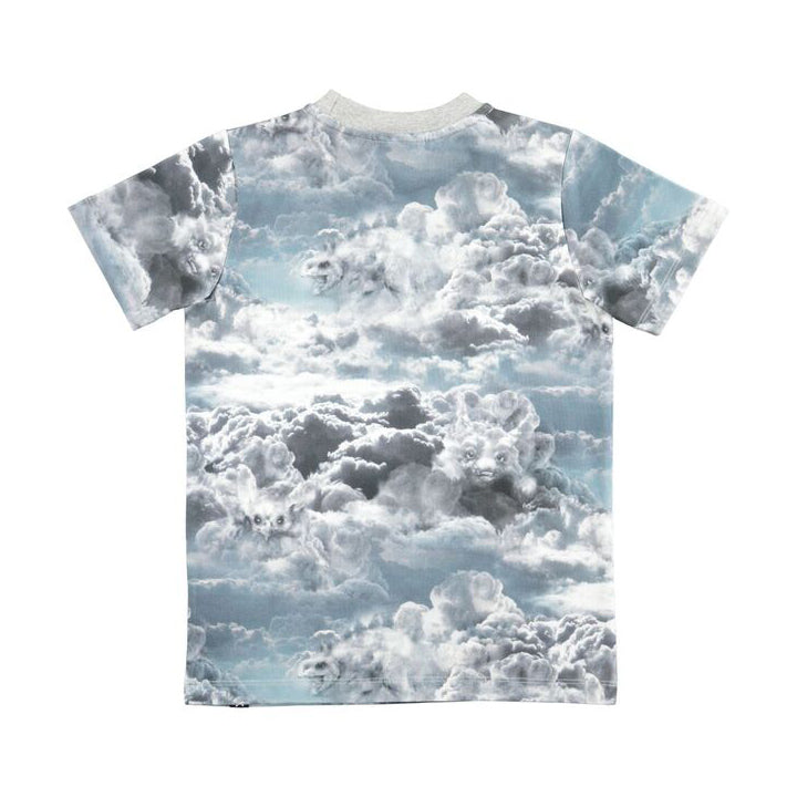 Cloud Figures Ralphie Top