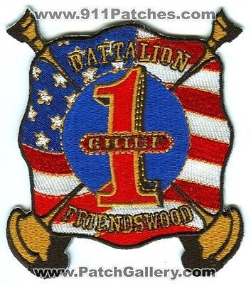 Friendswood Fire Department Battalion Chief 1 Dept FD Rescue EMS Patch Texas TX