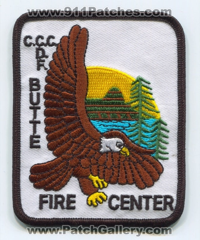 Butte Fire Center Forest Wildfire Wildland Patch California CA