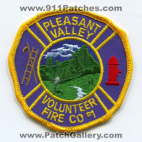 Pleasant Valley Volunteer Fire Company Number 1 Patch Missouri MO