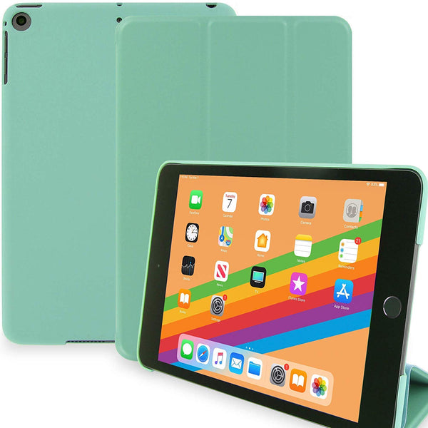 iPad Mini 5 - 2019 - Dual Mint Green
