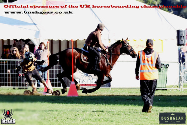 Horseboarding - it's all the rage these days!