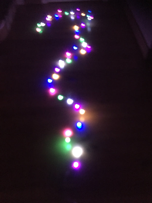 String of Coloured Pearl Lights-End of season sale