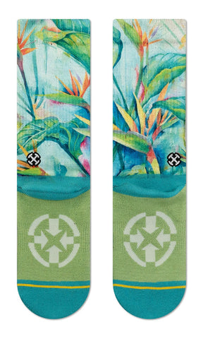Bird of Paradise Socks
