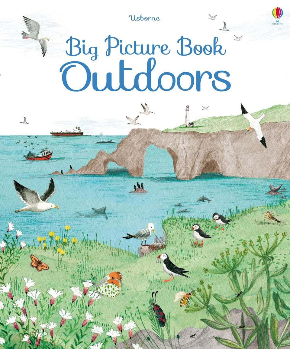 Big Picture Book : Outdoors