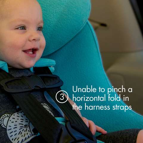 "Young toddler in a blue clek car seat with text ""unable to pinch a horizontal fold in the harness straps"""