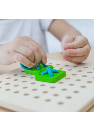 Plan Toys Lacing Board  -Go Green Baby