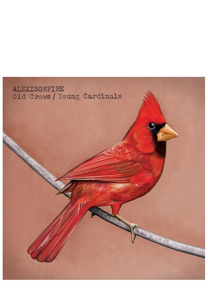 Old Crows / Young Cardinals (CD)