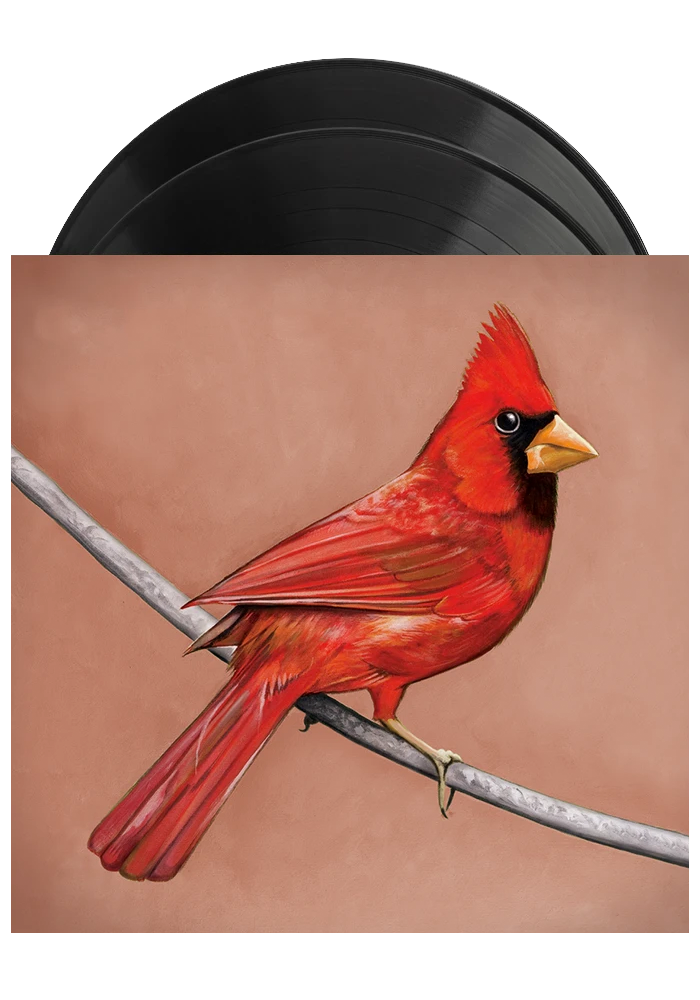 Old Crows / Young Cardinals (2LP)