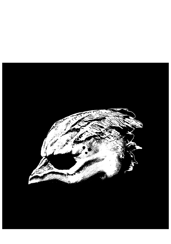 Legend of the Seagullmen - Legend of the Seagullmen (CD+Shirt)