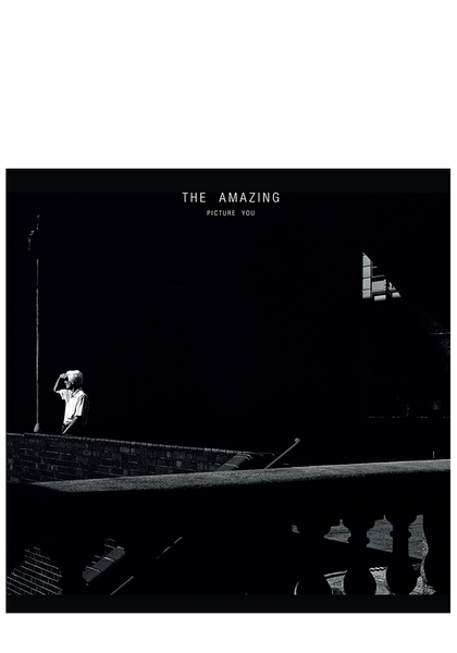 The Amazing - Picture You (CD)