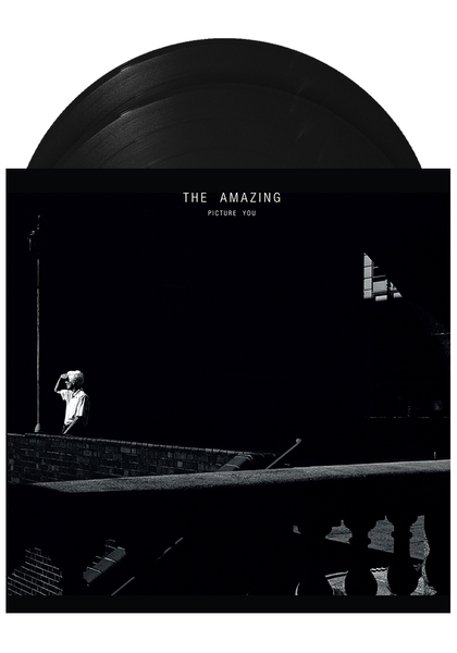 The Amazing - Picture You (LP)