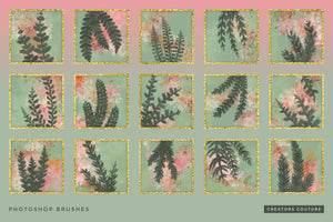Hand-drawn Tropical Vine & Leaf Photoshop Pattern Brushes, brush previews 2