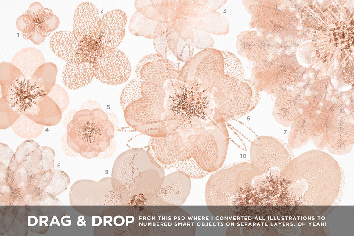 Feathery Flowers | Shimmering peach illustrations & digital papers, tulle floral illustrations