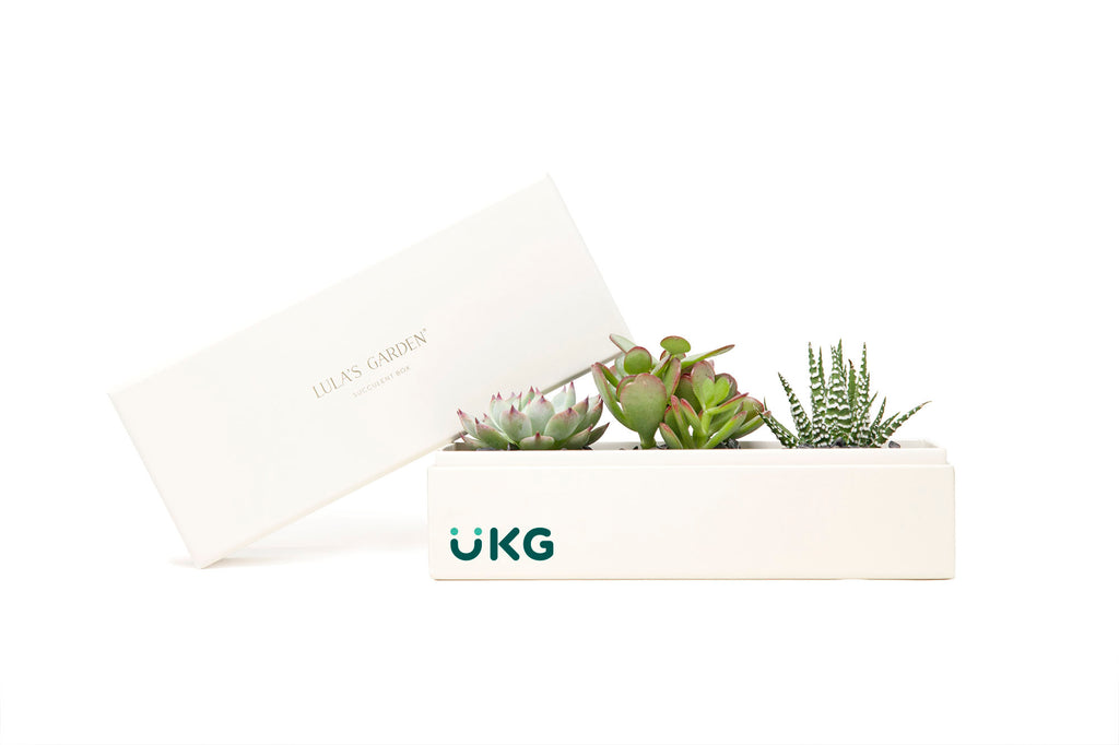 Ultimate Kronos Group - JS - CUSTOMER // Jewel Garden // CPC + IL