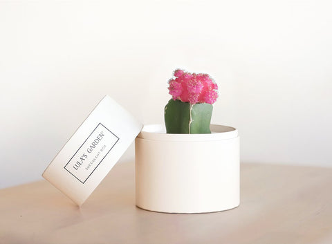 Pink Cacti Garden (Limited Edition)