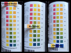 Natural PH Test Strips by PUNA - Wellness - 3