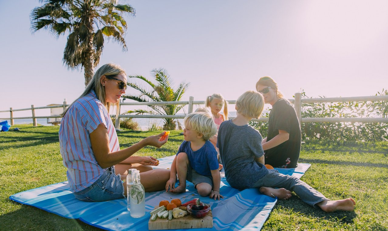 Family picnic on rug on grass