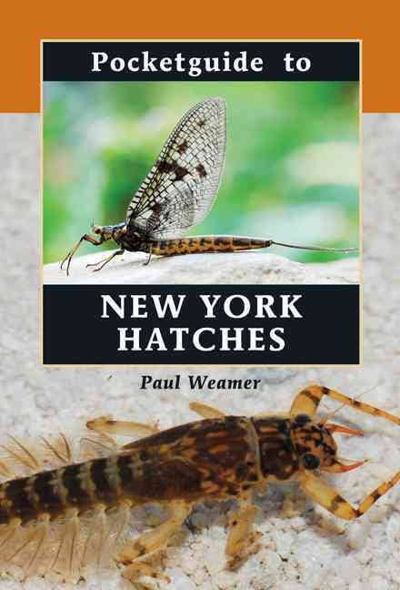 Pocket Guide to New York Hatches - The TroutFitter Fly Shop