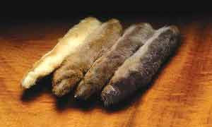 RUMPF - Snowshoe Rabbit Feet - The TroutFitter Fly Shop