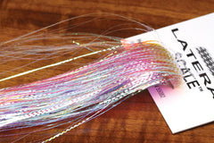 Lateral Scale - The TroutFitter Fly Shop