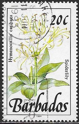 Barbados 756a Used - Flower - Spiderlilly - 1991