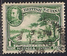 British Guiana 210 Used - Plowing a Rice Field - George V