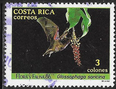 Costa Rica 378 Used - Fauna & Flora - Pallas's Long-Tongued Bat