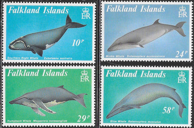 Falkland Islands 501-504 MNH - Whales