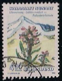 Greenland 190 Used - Flower - Pedicularis Hirsuta