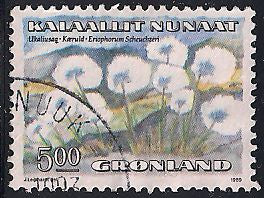 Greenland 191 Used - Flower -  ‭Eriophorum Scheuchzeri
