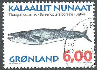 Greenland 306 Used - Whale