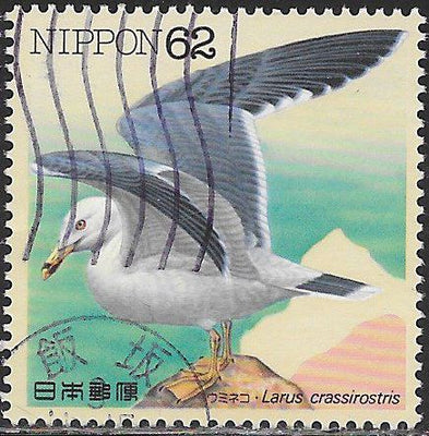 Japan 2105 Used - Waterbirds - ‭Larus crassirostris - Black-Tailed Gull