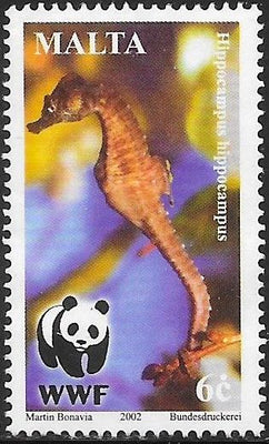 Malta 1072 Used - ‭World Wildlife Fund for Nature - Seahorses  (Hippocampus hippocampus)
