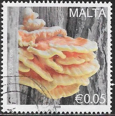 Malta 1355 Used - ‭‭Mushrooms - Bracket Fungus (Laetiporus sulphureus)