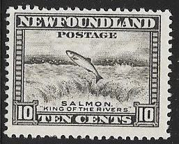 Newfoundland 193 Unused/Hinged - Salmon