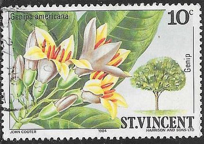 St. Vincent 720 Used - Flower - Genip