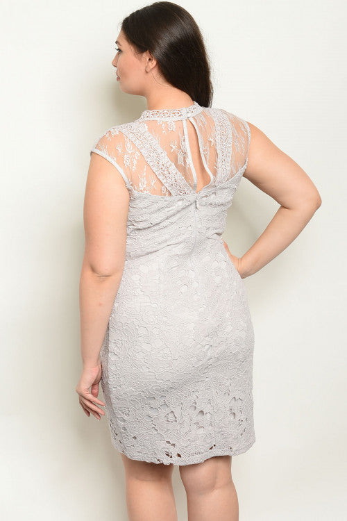 Rita Gray Plus Size Dress